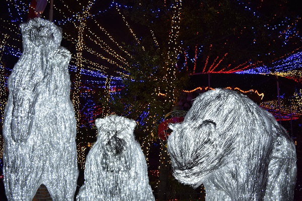 SIX FLAGS PRESENTA CHRISTMAS IN THE PARK3 (2)6