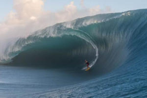 coco nogales surfeando-1