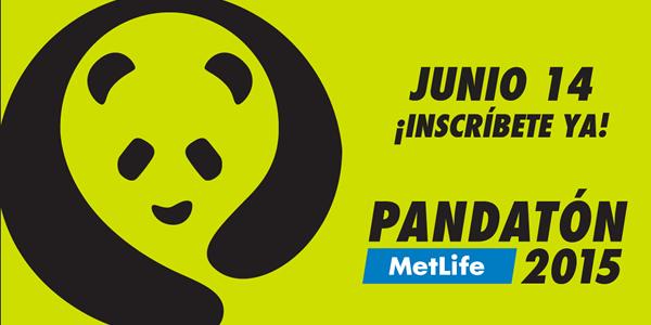 PANDA EXPRESS CONVOCA AL PANDATÓN1