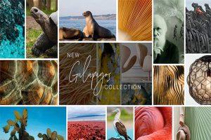 coleccion-galapagos-de-adriana-hoyos-estilo-unico-y-confort-3.jpg