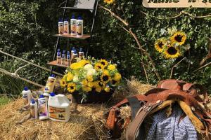 mane  n tail presenta sus productos para el cuidado del cabello en mexico4